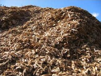 Crop Waste