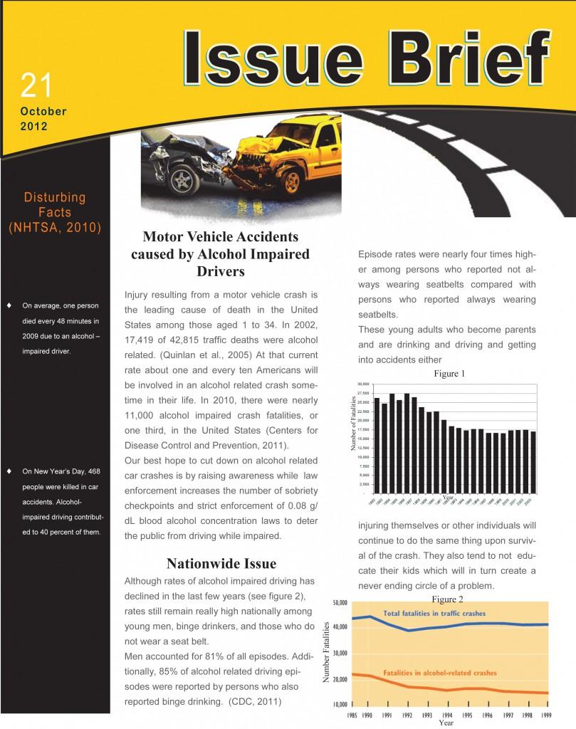 Issue Brief - Page 1