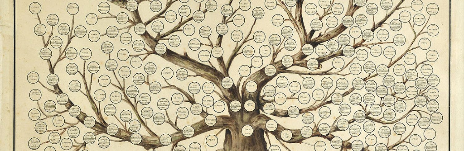 Old Family Tree Image